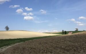 美瑛ブルー メルヘンの丘と空